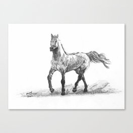Moving Horse Canvas Print