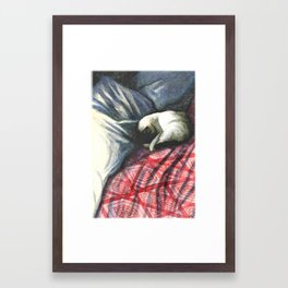 siamese on rumpled bed Framed Art Print