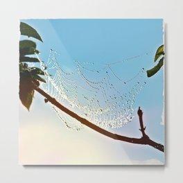 Spiderweb Divine Metal Print