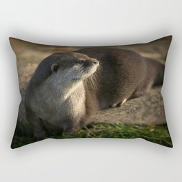 Otter Looking Into The Sunshine Rectangular Pillow