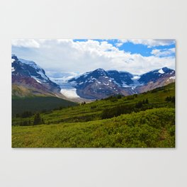 View along the Wilcox Pass Hike in Jasper National Park, Canada Canvas Print