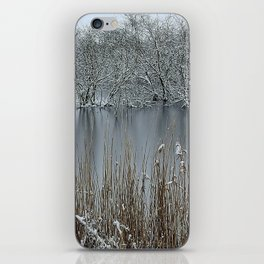Icy Winter Lake with Frozen Trees and Reeds iPhone Skin