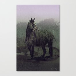 The Water Kelpie Canvas Print