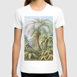 Vintage Fern and Palm Tree Art - Haeckel, 1904 T-shirt