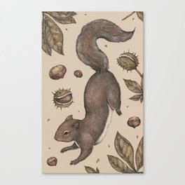 The Squirrel and Chestnuts Canvas Print