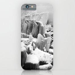 BnW Winter Ice iPhone Case