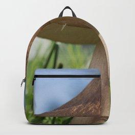 Toadstool Backpack