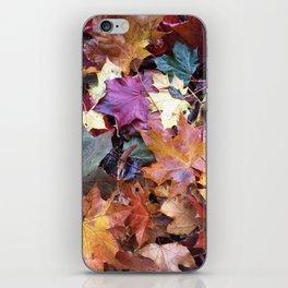 Fallen Fall Leaves iPhone Skin