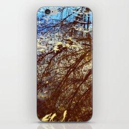 Storm Flotsam iPhone Skin