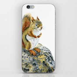 Bright-eyed and Bushy-tailed by Teresa Thompson iPhone Skin
