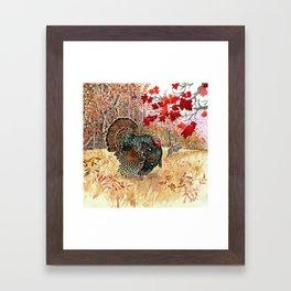 Woodland Turkey Framed Art Print