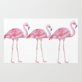 Flamingo - Pink Bird - Animal On White Background Rug