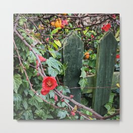 Red Flowers Over a Green Fence Metal Print