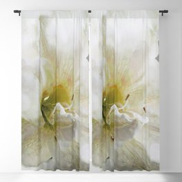 abstract amaryllis Blackout Curtain