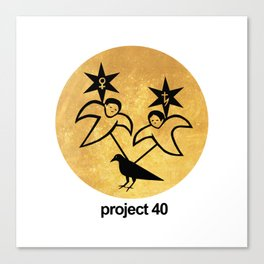 Project 40 Canvas Print