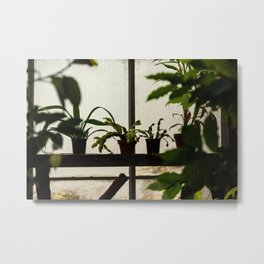 Plants on the Edge Metal Print