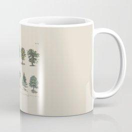 Trees Vintage Scientific Labeled Species Diagram Encyclopedia Lithograph German Language Coffee Mug