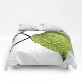 Raindrop Leaves Comforters