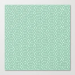Chicken Wire Mint Canvas Print