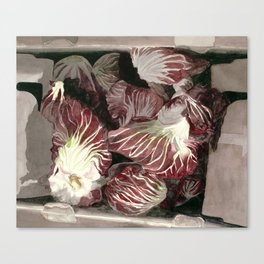 Radicchio in Box Canvas Print