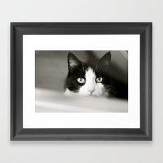 Let Me Out Framed Art Print