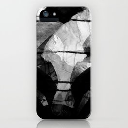 a stark winter morning iPhone Case