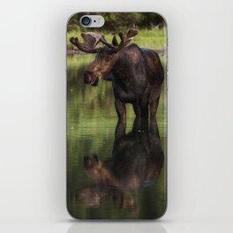 Reflecting Bull iPhone Skin