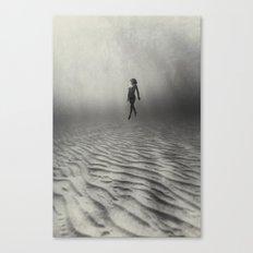 140701-4892b Canvas Print