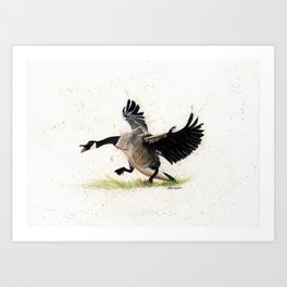 Cranky Goose - watercolor art, bird, animals Art Print