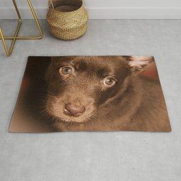Puppy- Australian Kelpie Rug