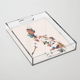 Map of the Philippines / 81 provinces Acrylic Tray