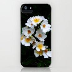 Flower Slim Case iPhone (5, 5s)