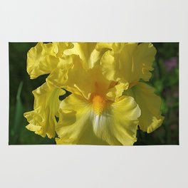 Golden Iris flower - 'Power of One' Rug