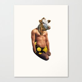 Muscle Cow Canvas Print
