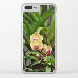 Yellow Orchid plant Clear iPhone Case