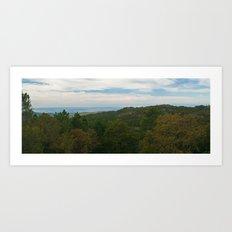 Rural layers Art Print