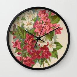 045-weigela candida, weigela rosea, weigela floribunda, weigela amabilis16 Wall Clock
