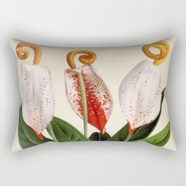 Anthurium scherzerianum old plate Rectangular Pillow