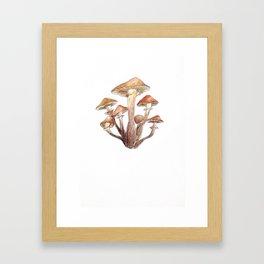 Watercolour Mushrooms Framed Art Print