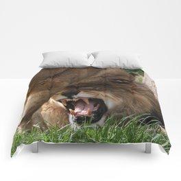 Love me tender Comforters
