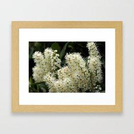 just white Framed Art Print