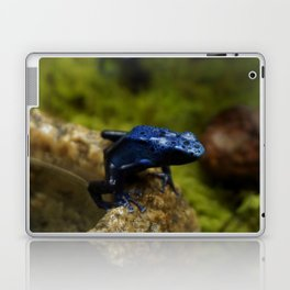 Blue Frog Laptop & iPad Skin