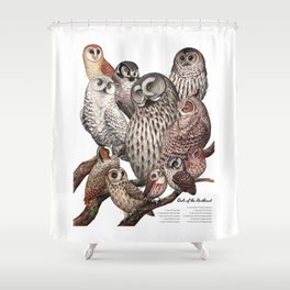 Owls of the Northeast Shower Curtain