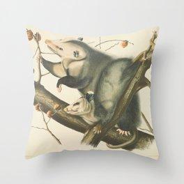Vintage Illustration of Mother and Baby Possum - John James Audubon - 1840 Throw Pillow