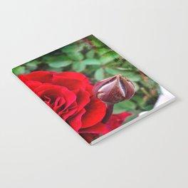 Rose revolution Notebook