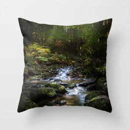 Reality lost Throw Pillow