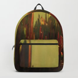 Abstract landscape colorful aerial view illustration Backpack