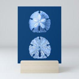 Sand Dollar Sea Life Print, Indigo Blue and White Mini Art Print