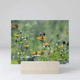 The Daintiness Of Nature Mini Art Print