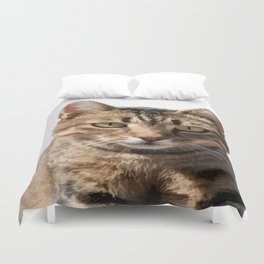 Portrait Of A Cute Tabby Cat With Direct Eye Contact Isolated Duvet Cover